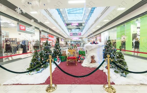 Приемная Деда Мороза ТРК Арена 2013