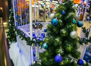 Приемная Деда Мороза ТРК Арена 2016